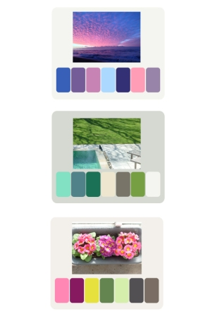 Colour Pallets from some of my photos