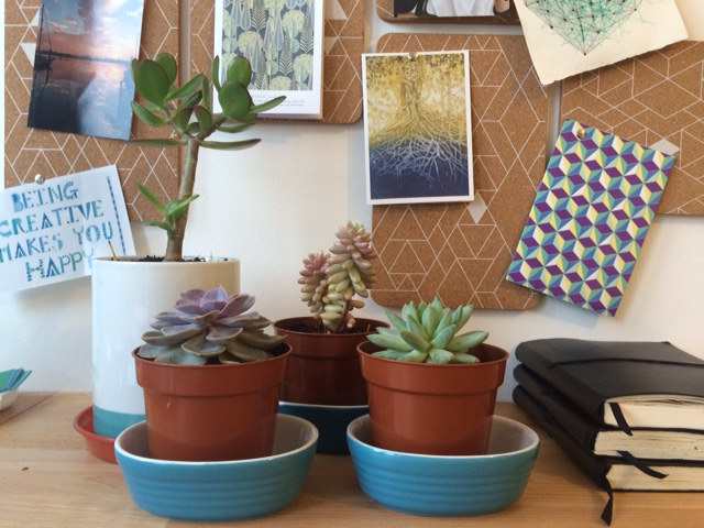 A few of the plants I have in my creative space :)