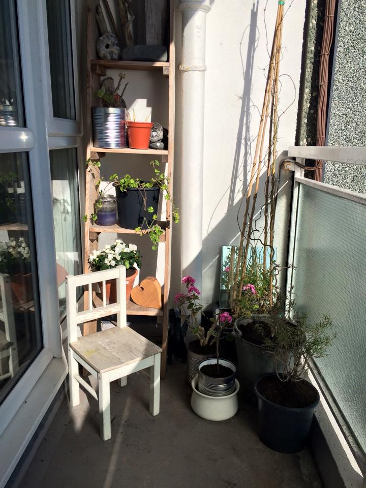 My Little Garden in the Sky
